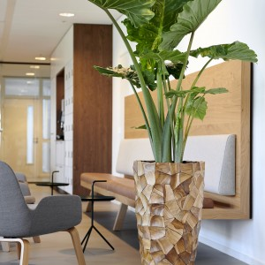 Grandis Vase Small